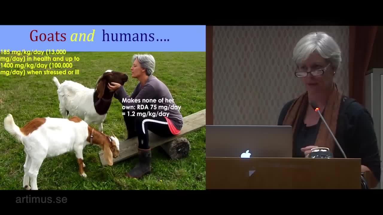 Lecture on vitamin C by brilliant Suzanne Humphries