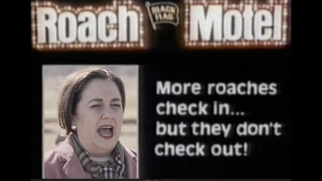 Welcome to The Roach Motel